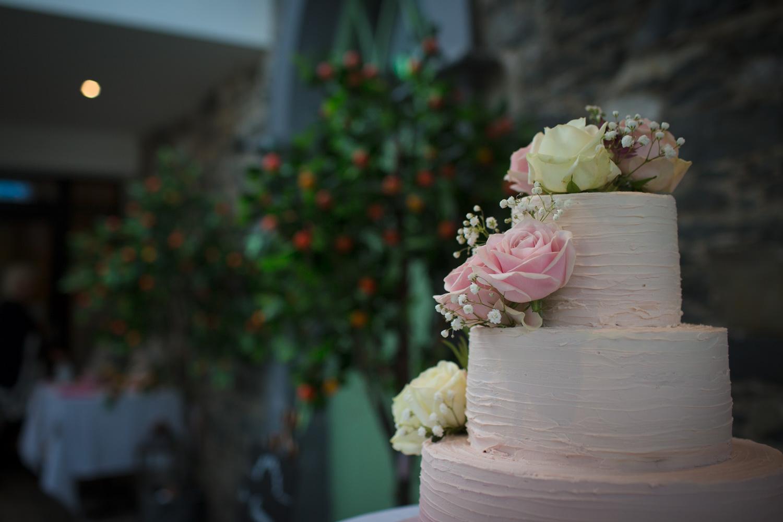 Mark_Barnes_Northern_Ireland_Wedding_Photography_Orangetreehouse-greyabbey_Wedding_Photography-previews-55.jpg