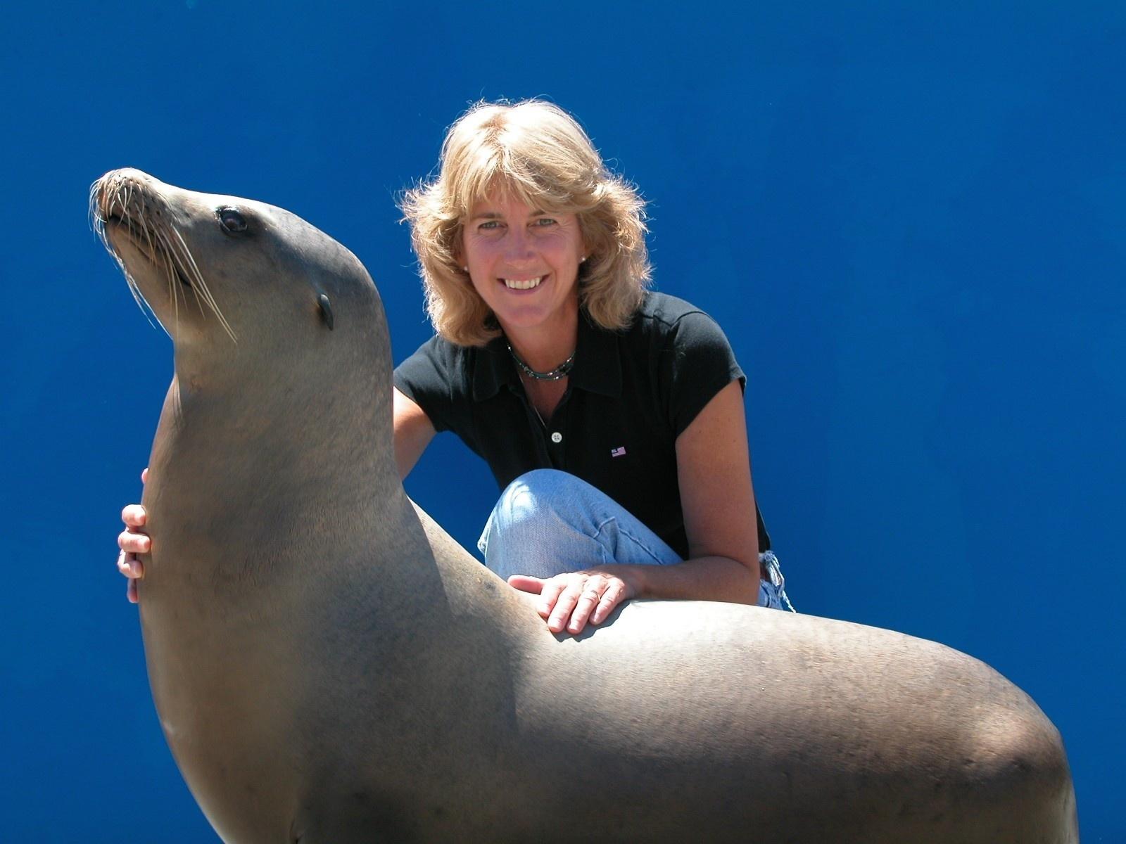 Terrie williams sea lion (3).jpeg