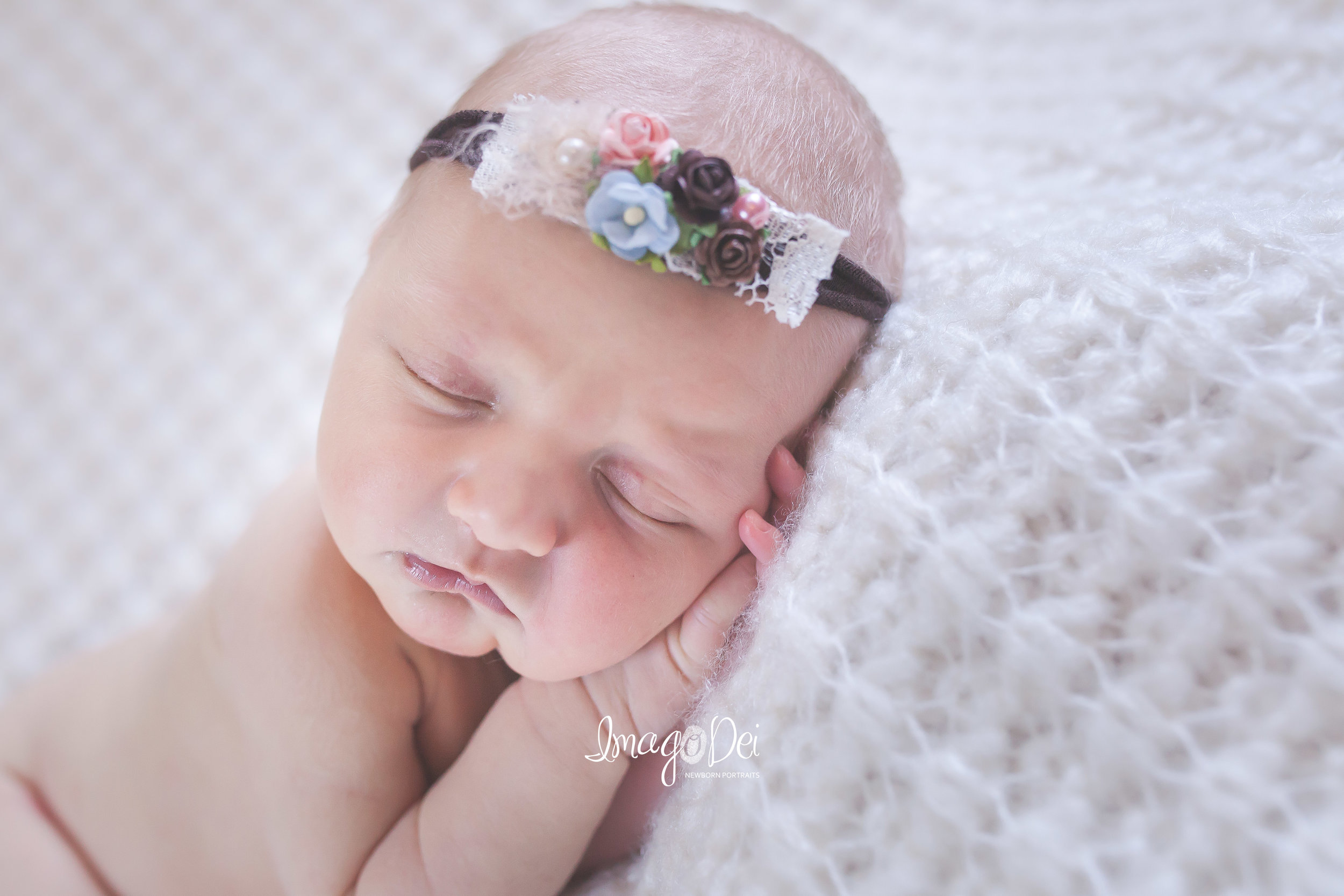 columbia mo newborn photographer
