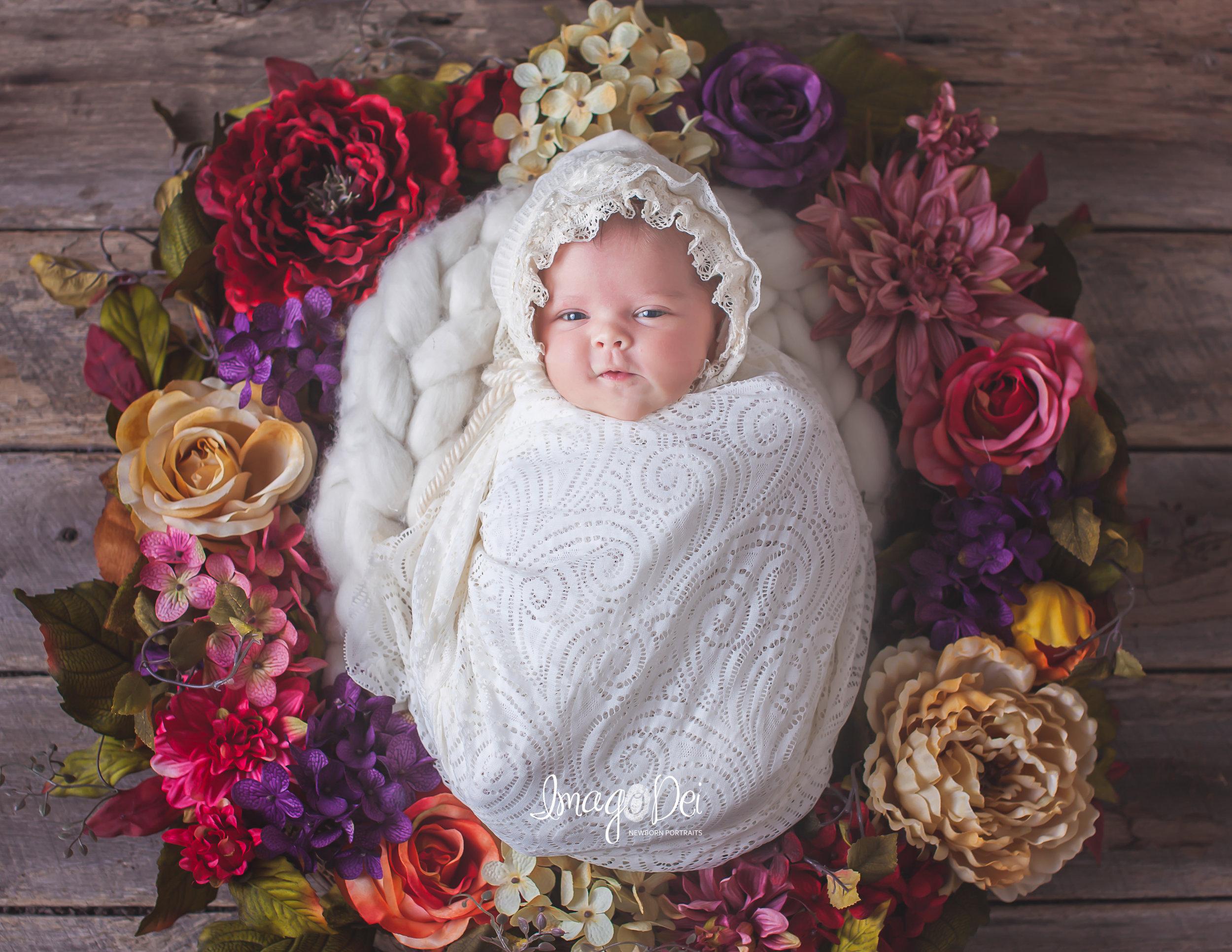imago-dei-newborn-photography-15