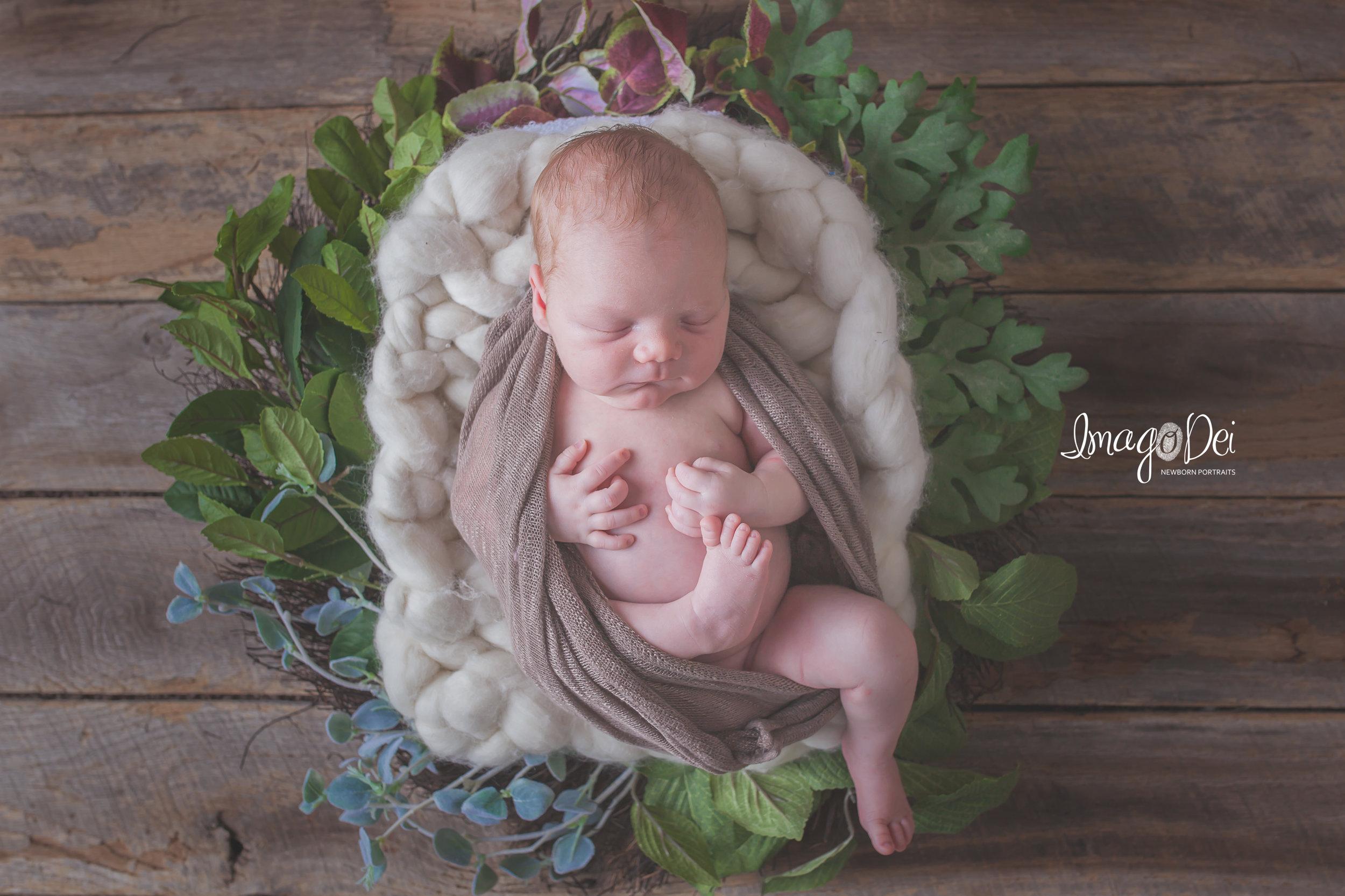 Columbia MO Newborn Photographer 1