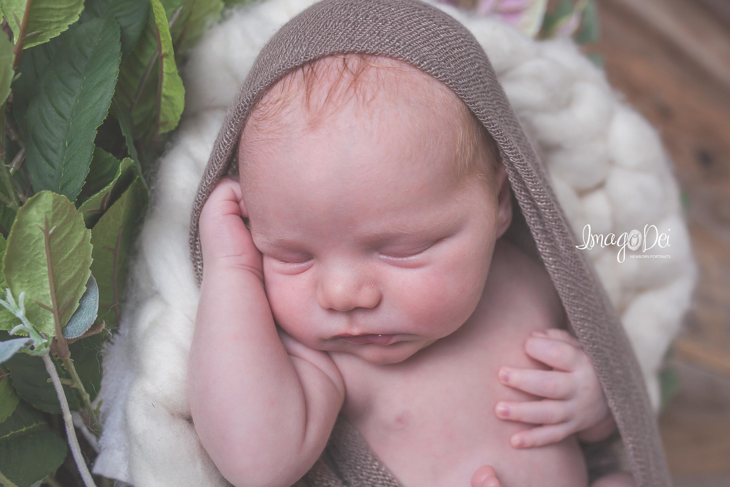 Columbia MO Newborn Photographer 4