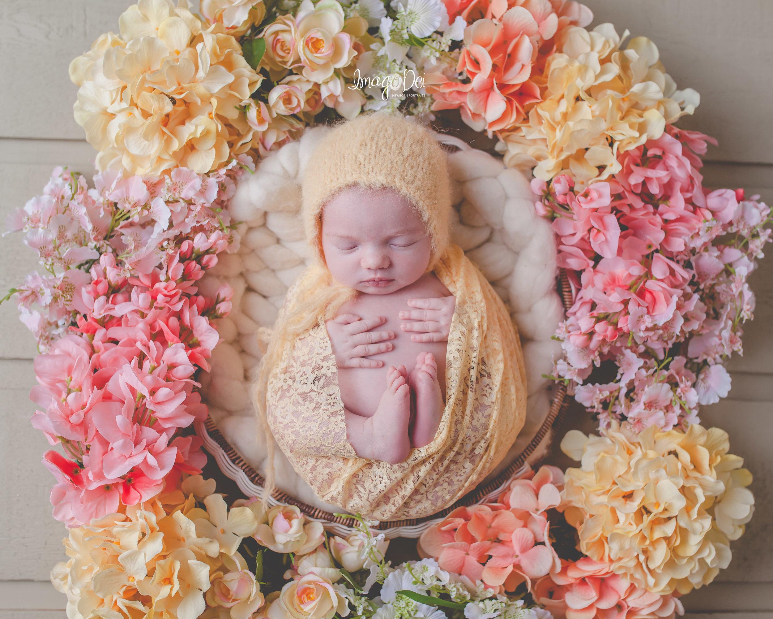 Columbia MO Newborn Photographer 7