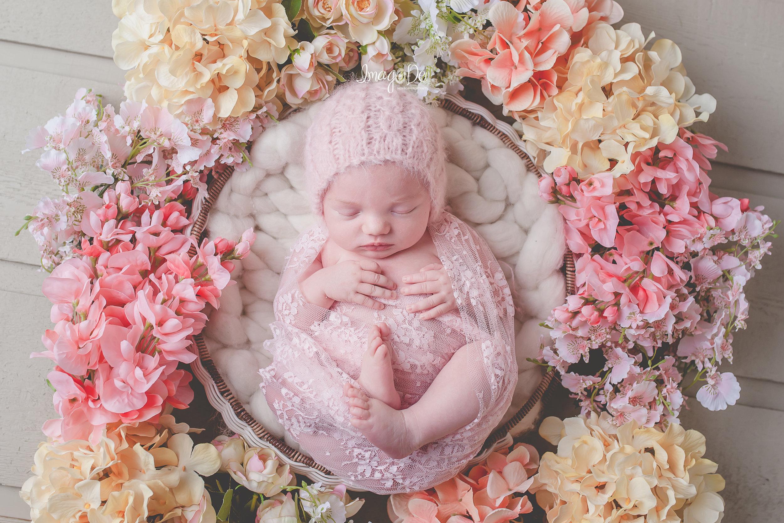 Columbia MO Newborn Photographer 11