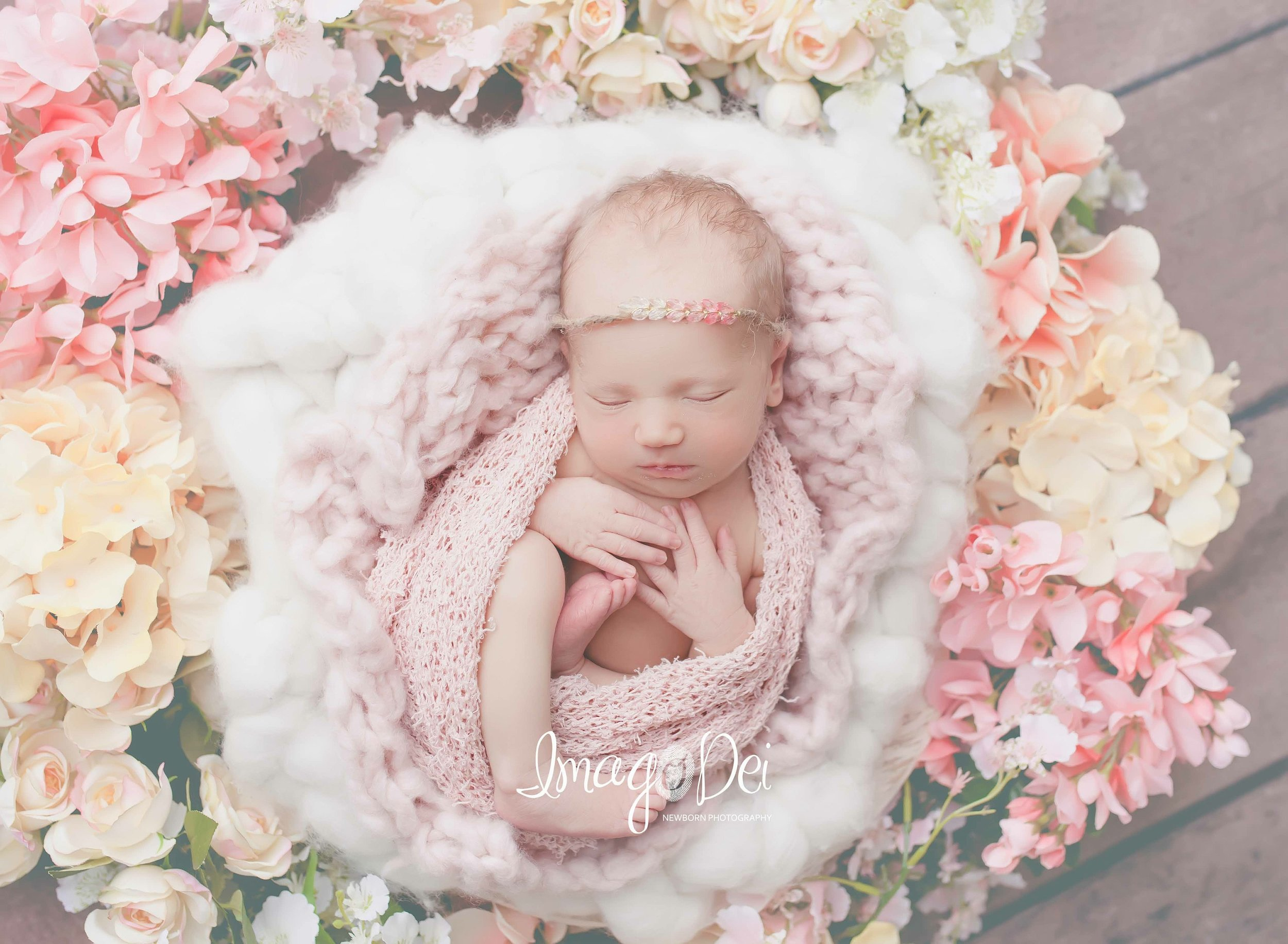 "- ""The best thing I've ever spent money on. I absolutely love our newborn photos of {our daughter}.""-Bekah M"