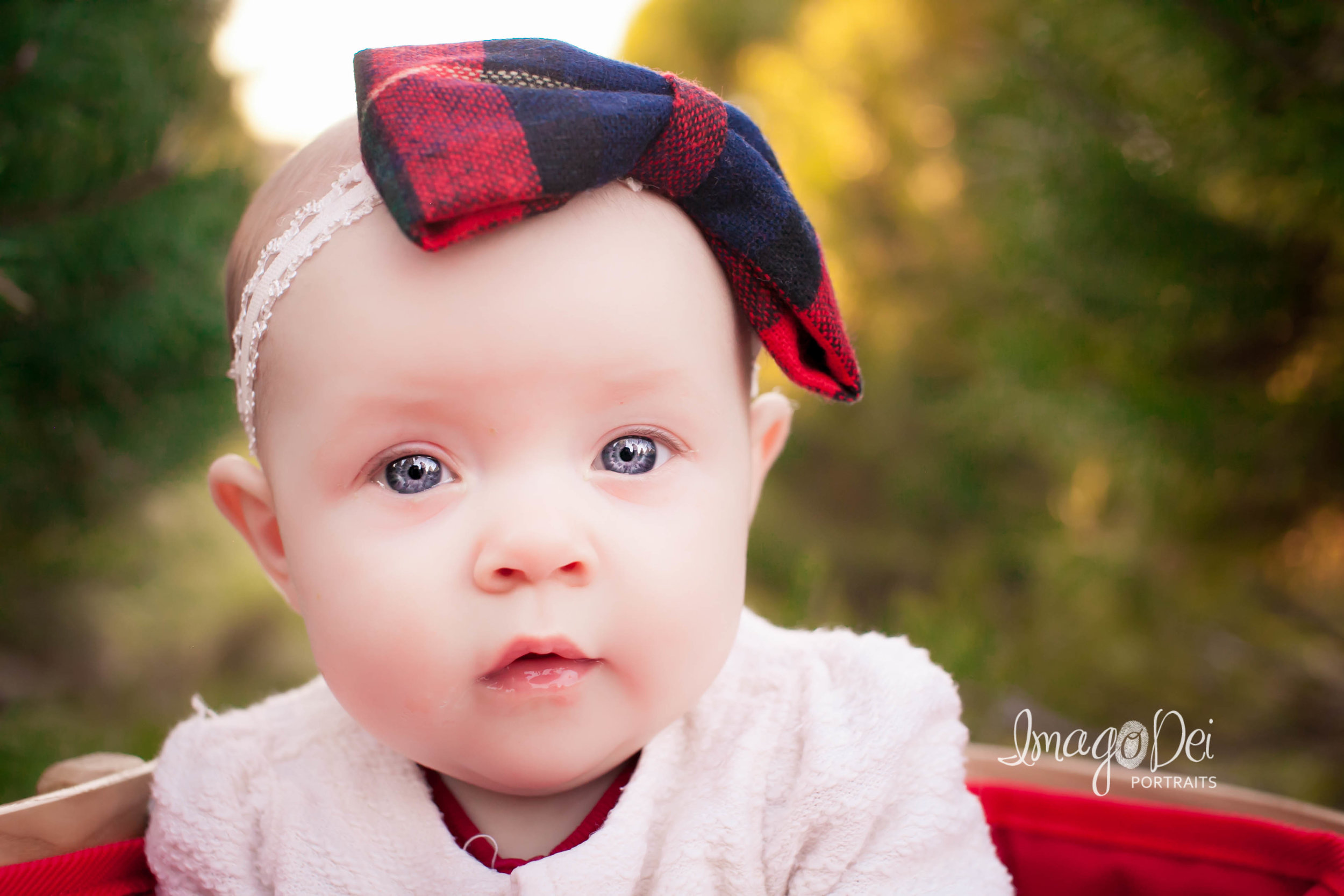 "- ""Crystal did such a wonderful job working with our family! She is so personable and relaxed. She got some amazing shots of our almost 4 month old baby girl. We will definitely be using Imago Dei again in the future!""-Kristen A"