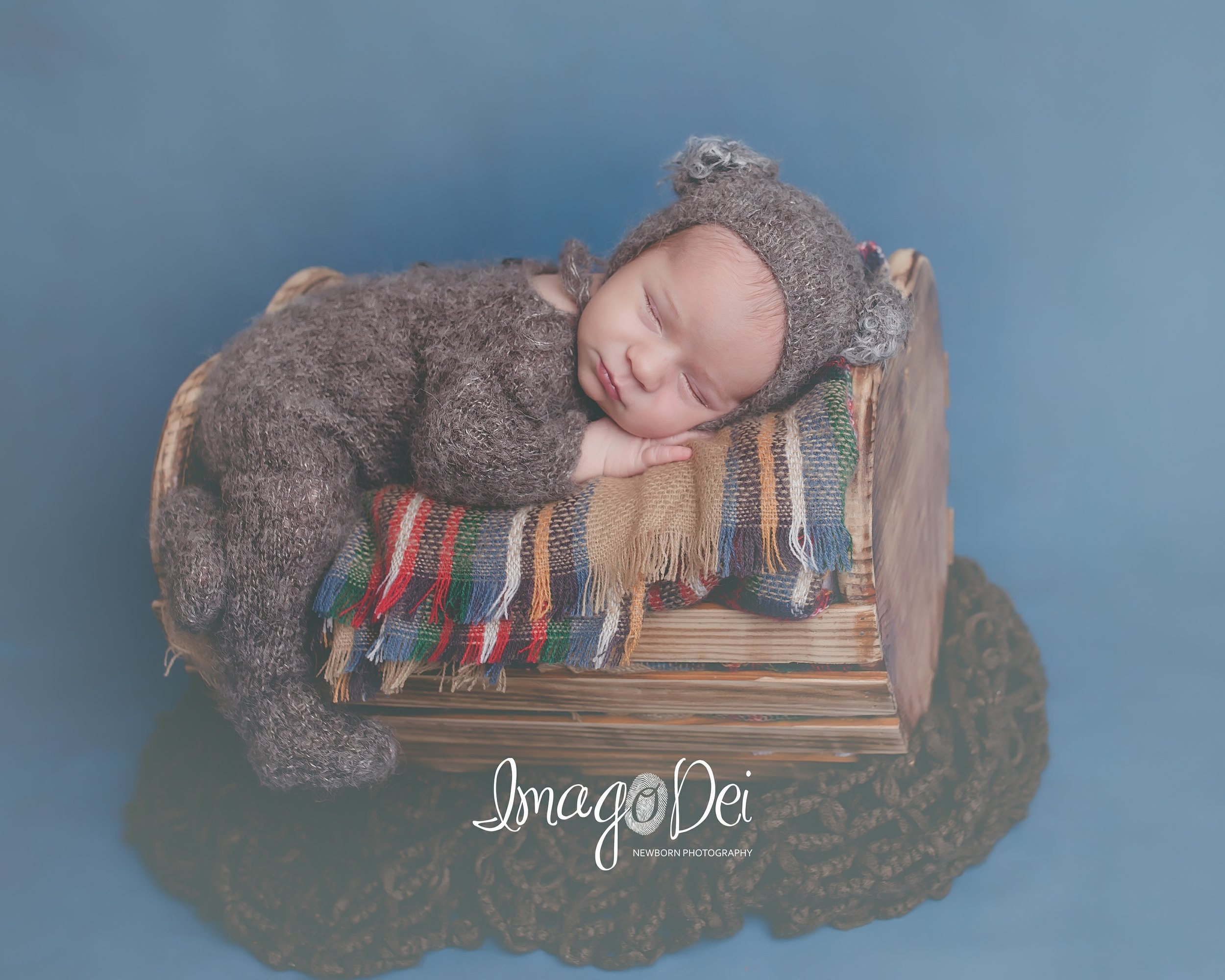 Imago Dei Newborn Photography- Lake Reg koala-1.jpg
