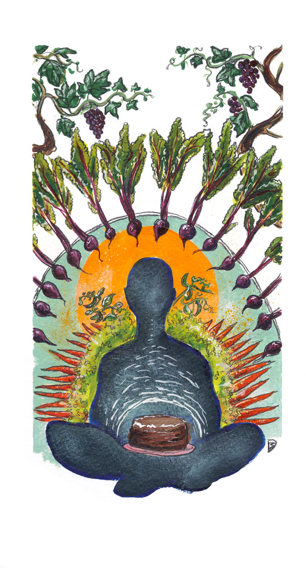 Edible Vineyard Spring 2015 Feature Illustrations