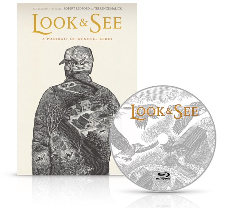 Look and See DVD Face and Disc.jpg