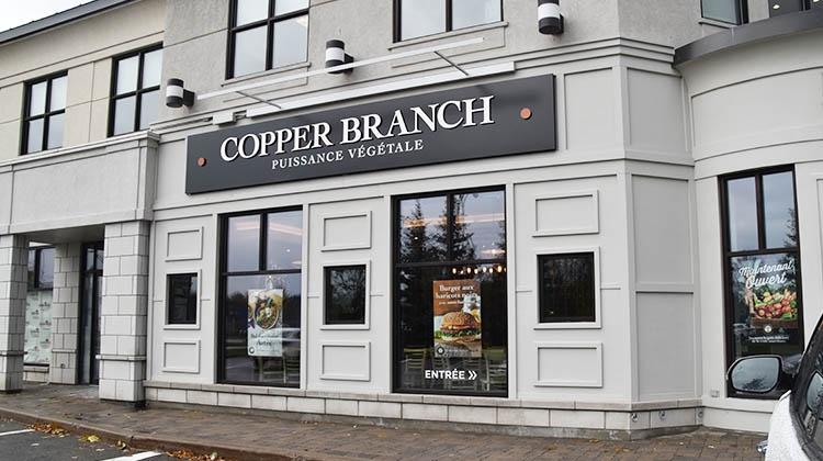 photo: copper branch