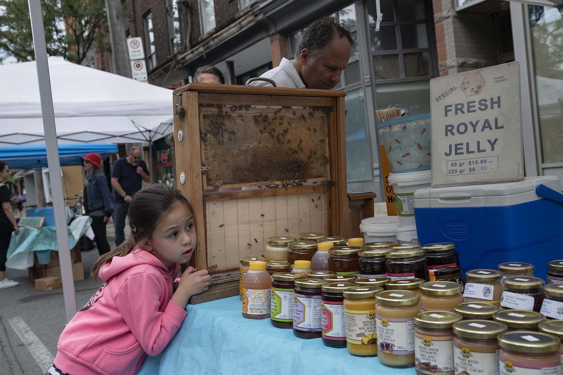 OssFest18 - Bee Vendor.jpg