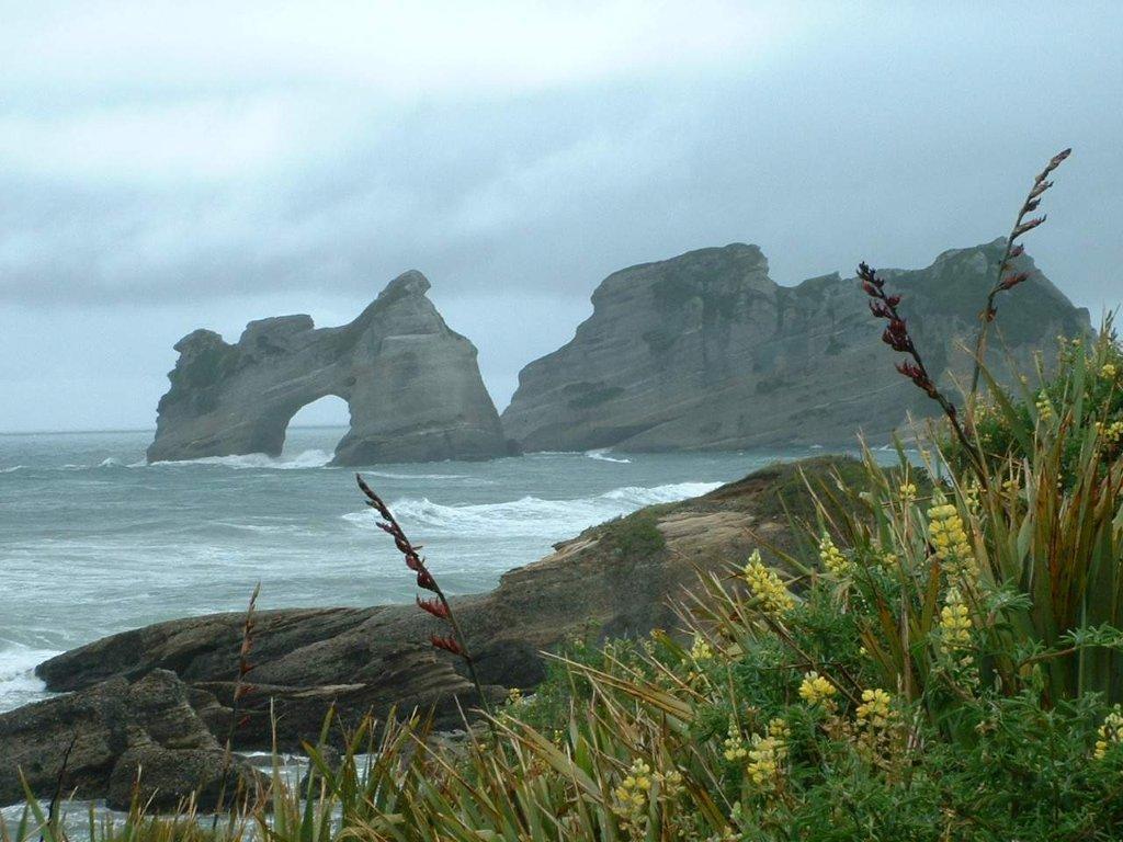 wild west coast New Zealand.jpg