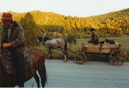 Traditional Transport