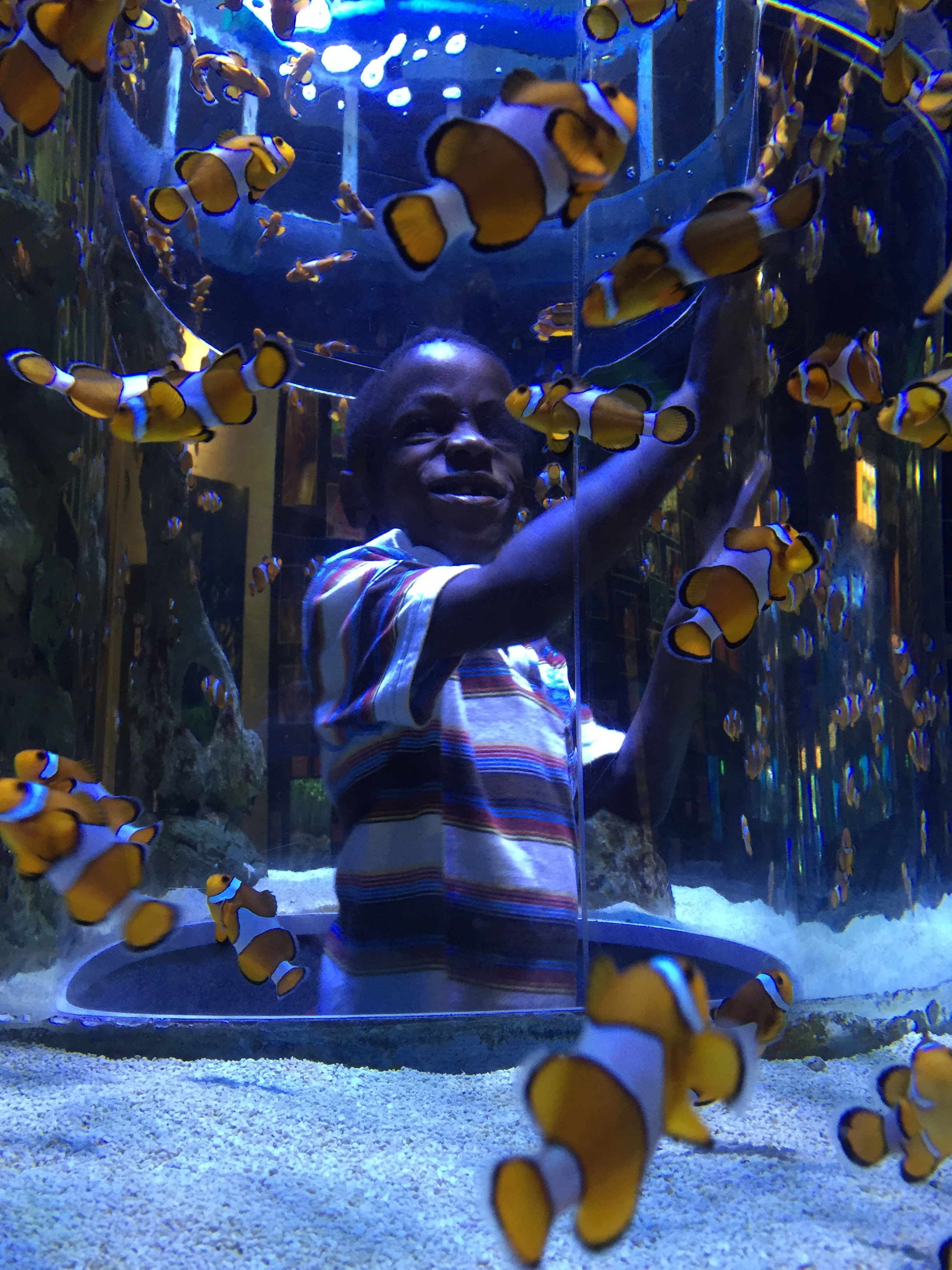 I think he was pretending to shoot the clown fish at this point. Boys.