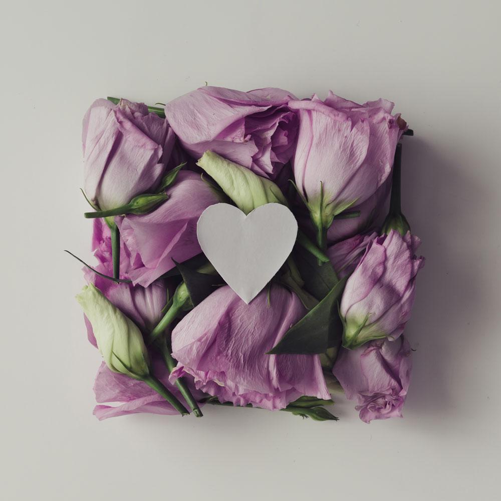 Corazon-violeta.jpg