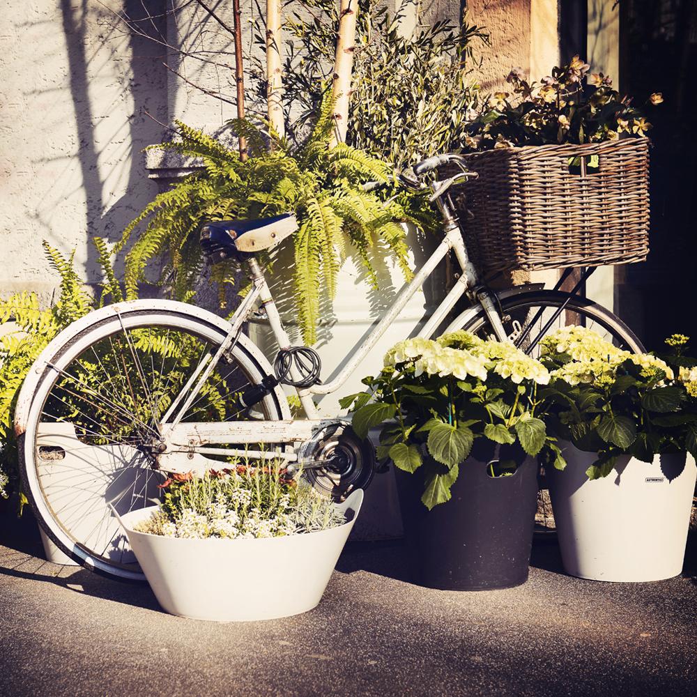 bike_green.jpg