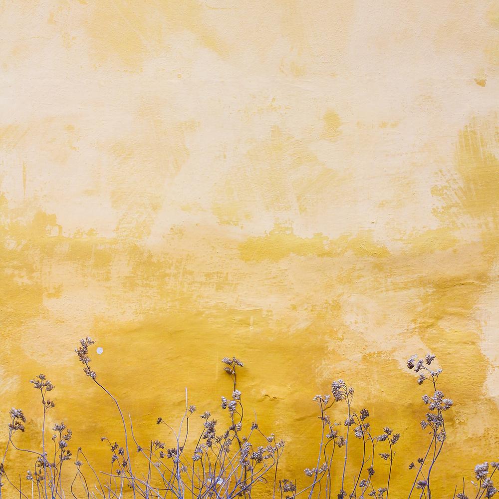 Yellow_wall.jpg