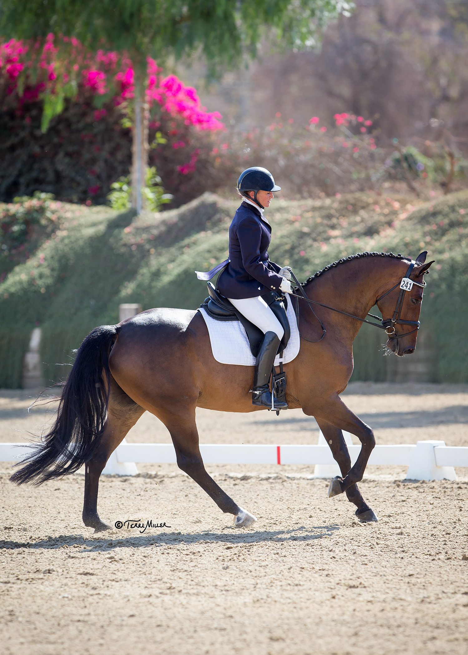 Karen and Theo for you - Championships 2016