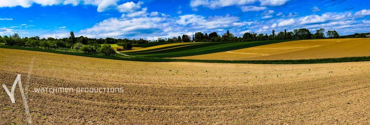 landscapes22.jpg