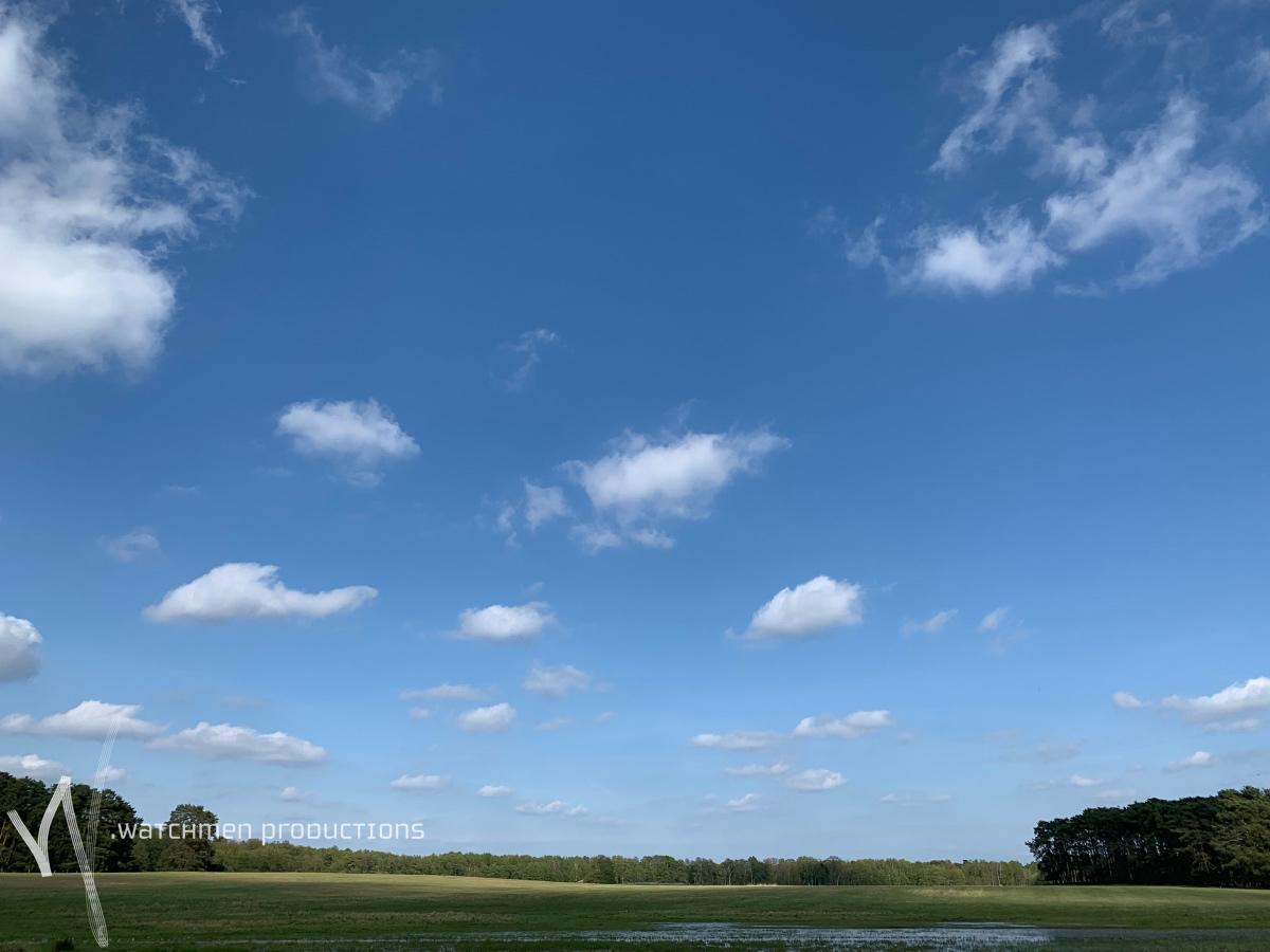 landscapes38.jpg