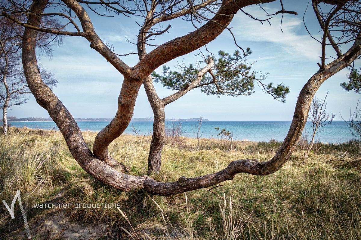 landscapes48.jpg