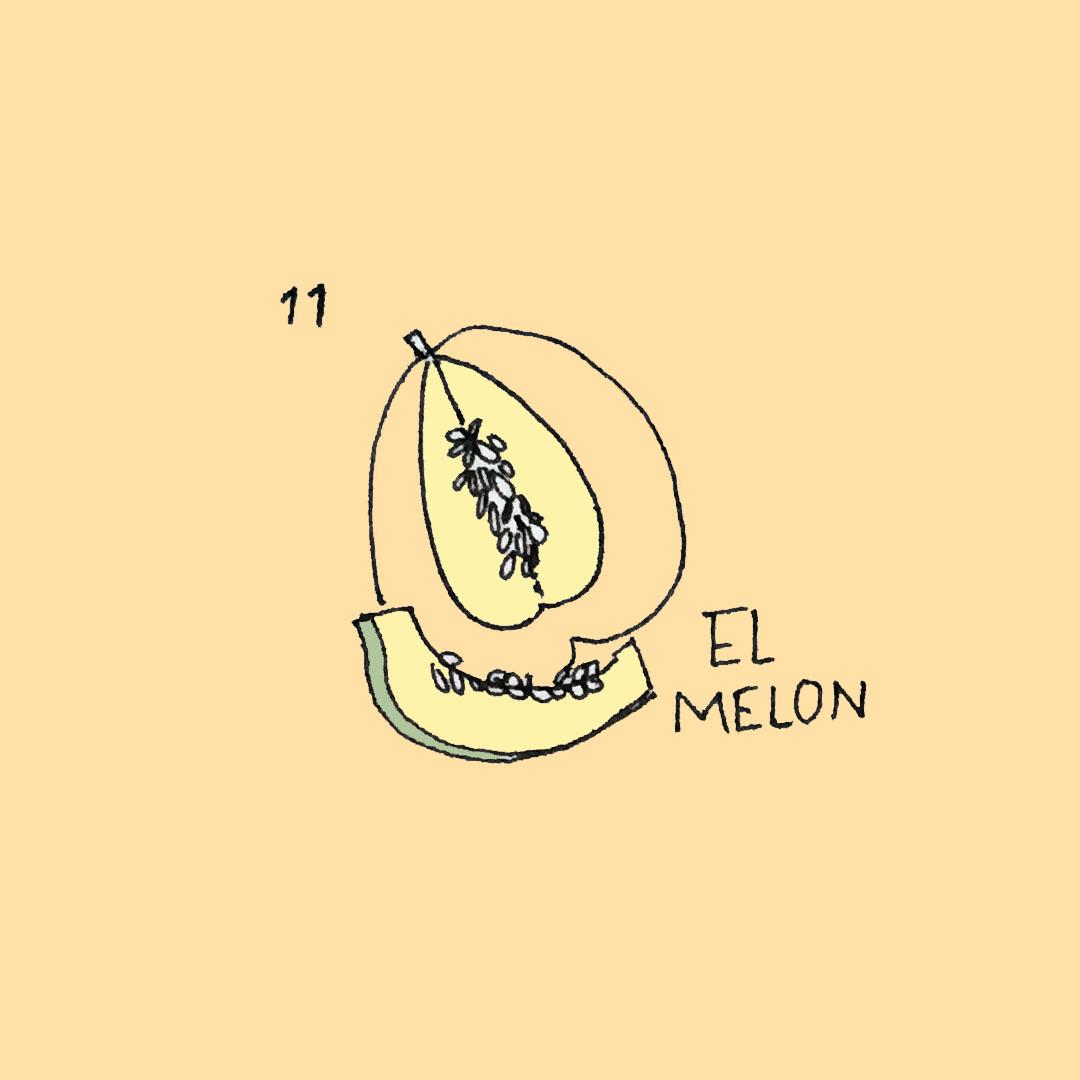 elmelon_ameliagoss