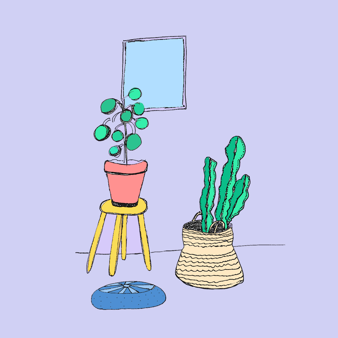 cactuslounge_ameliagoss.jpg