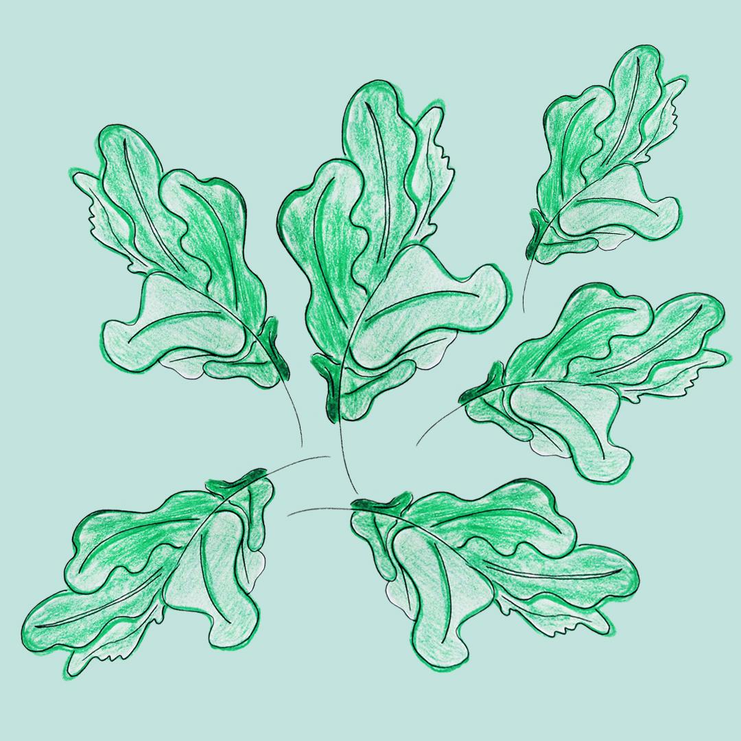 leaves_ameliagoss