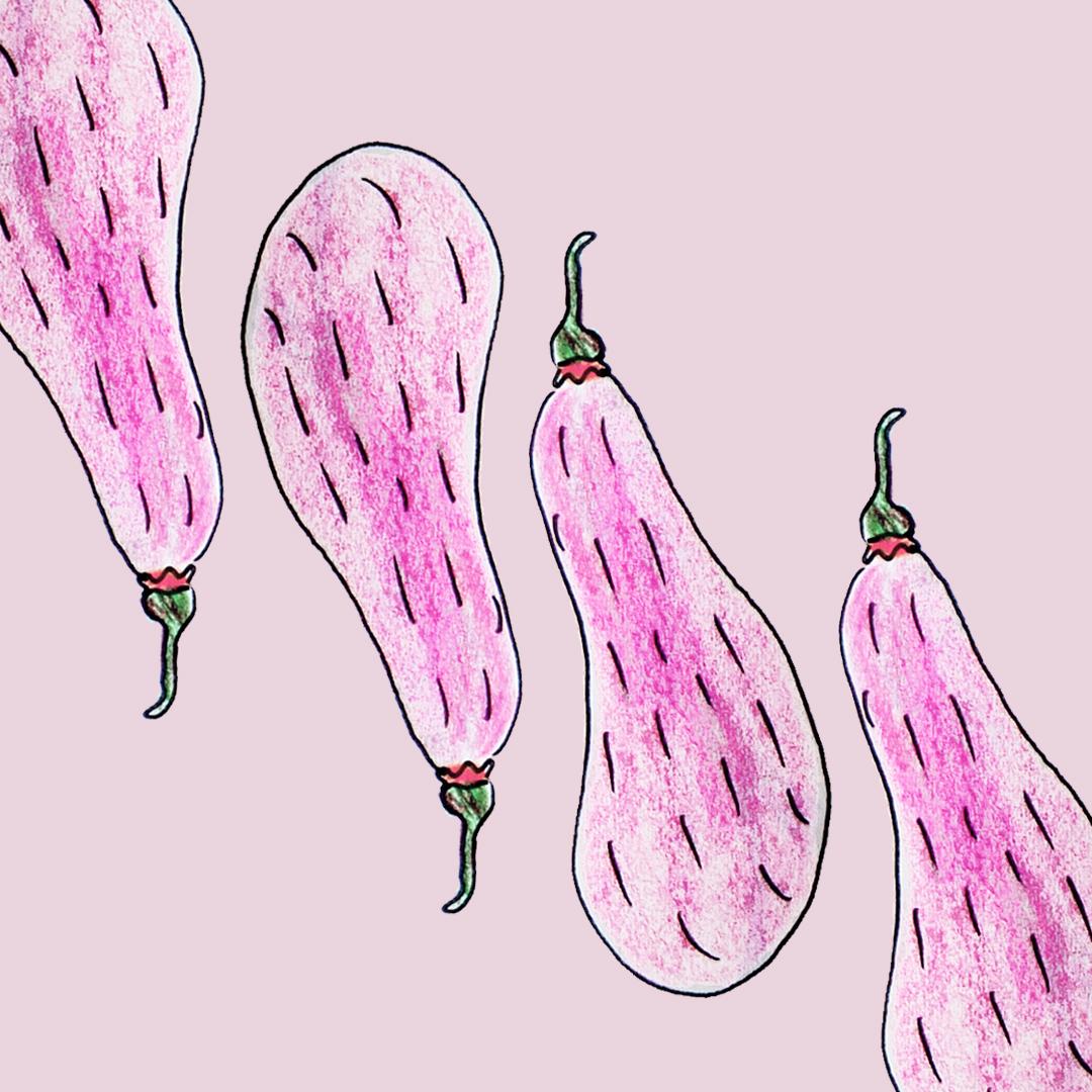 hairyeggplants_ameliagoss