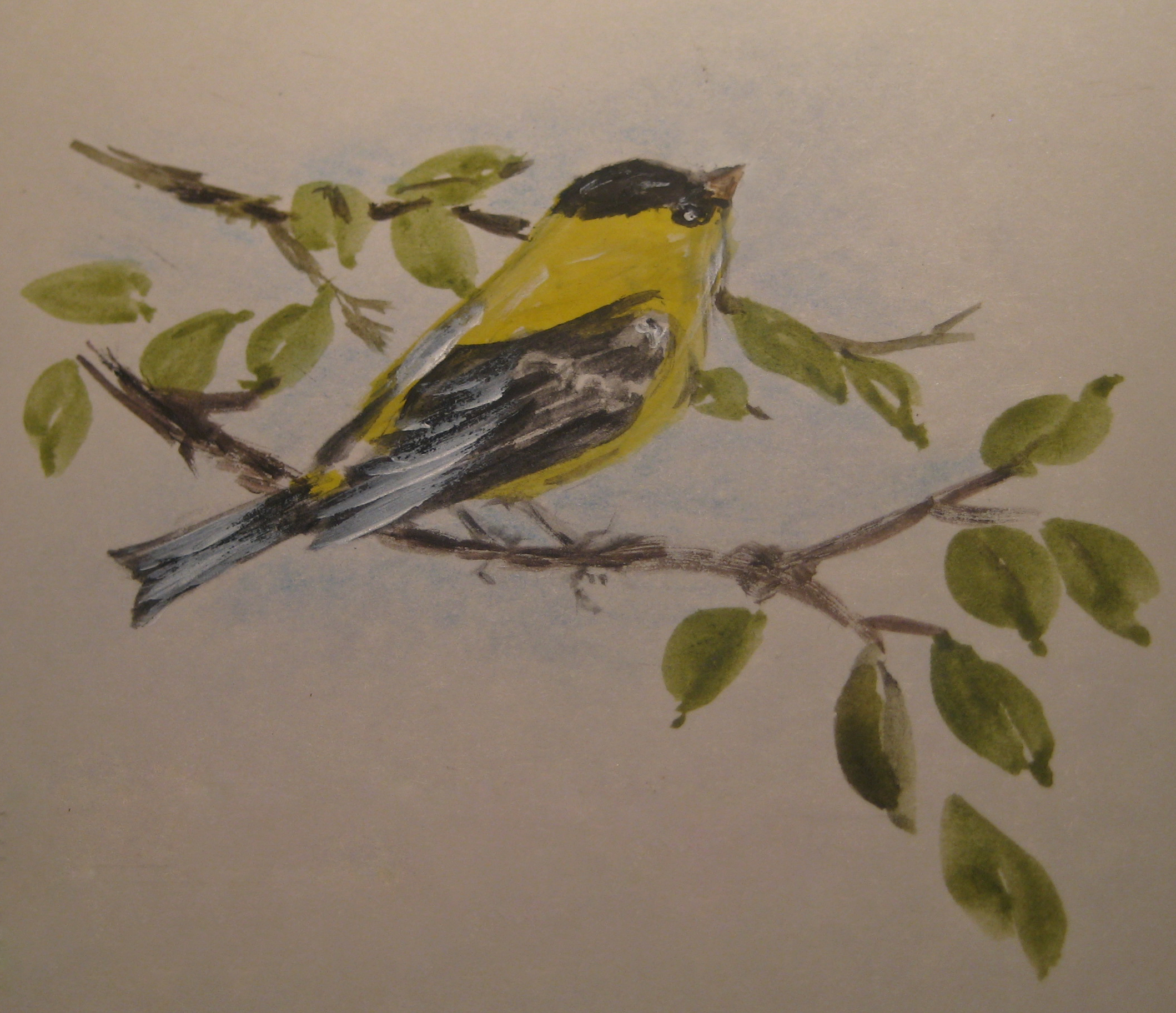 goldfinch_3.jpg