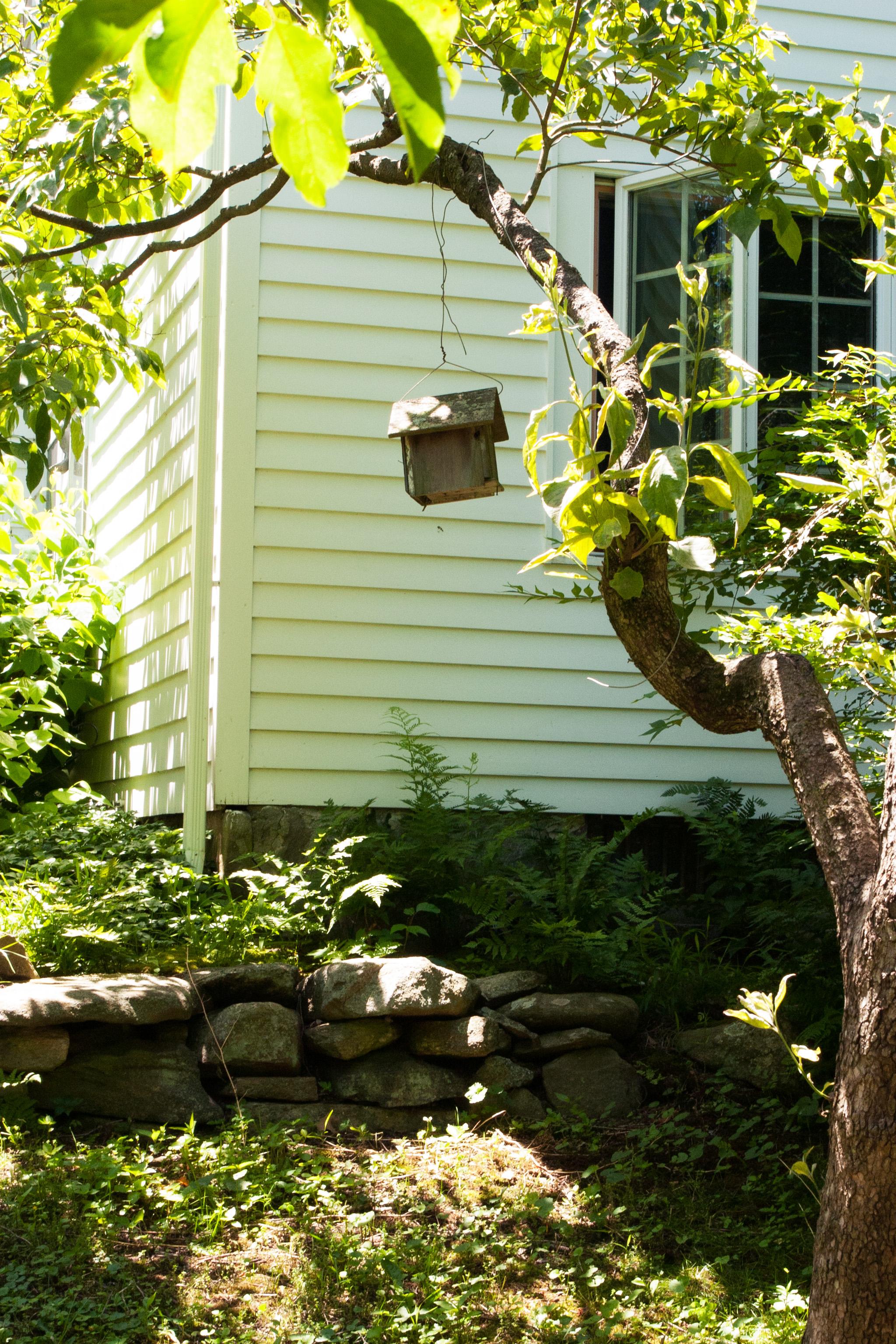 birdhouse_1.jpg