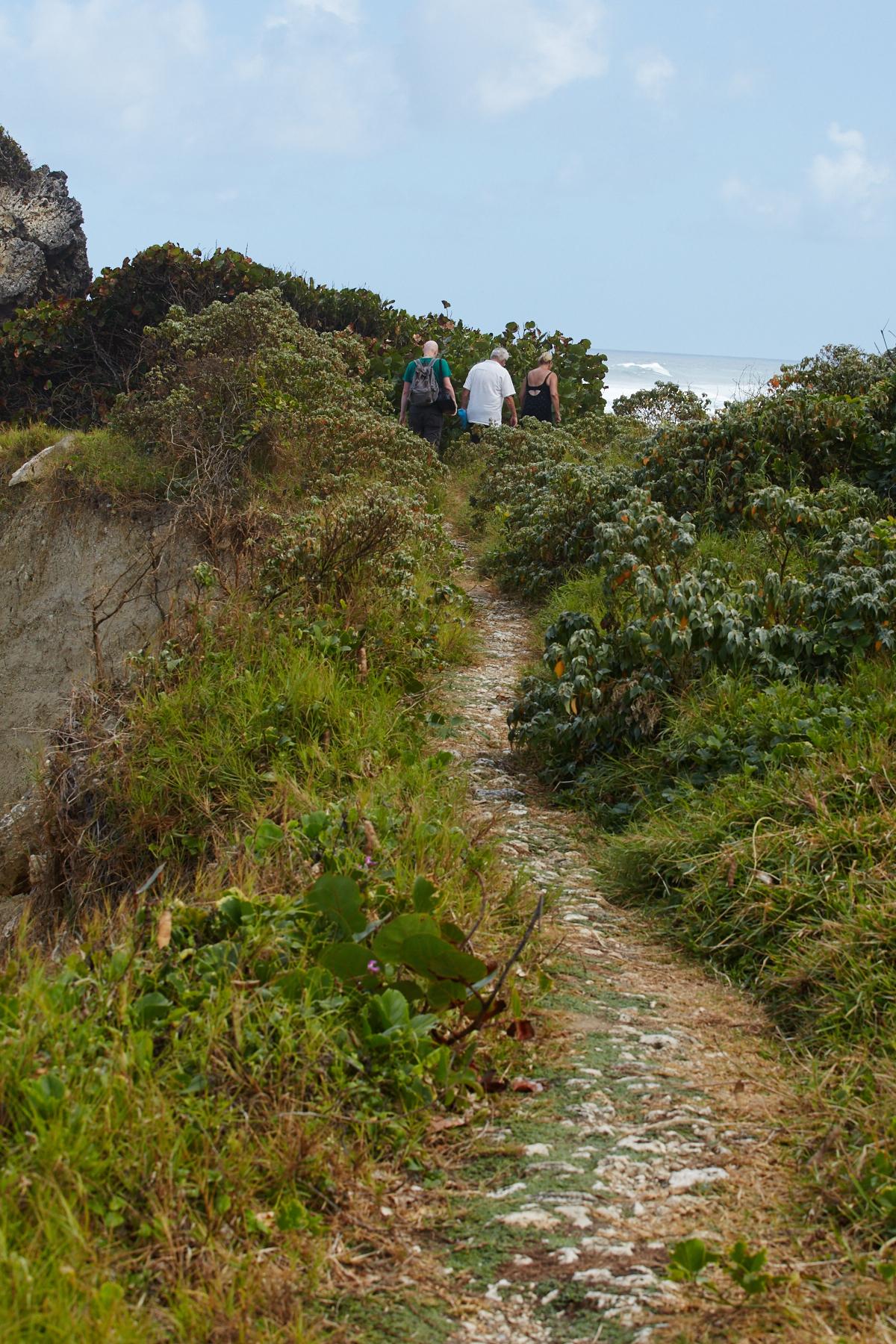 Tom, Jerry, and Joy walking along the ridge at Bathsheba