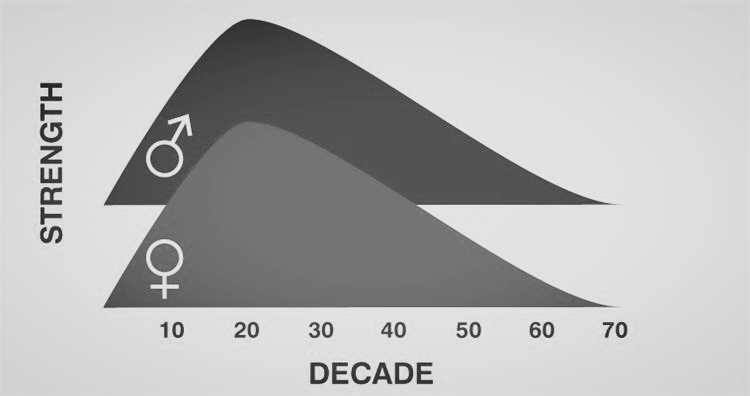 This graphic shows you the rise and decline of strength as we age and based on gender.