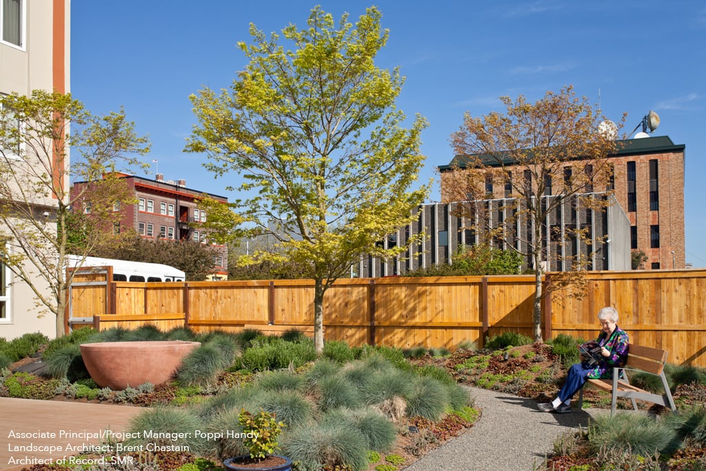hvm garden capped.jpg