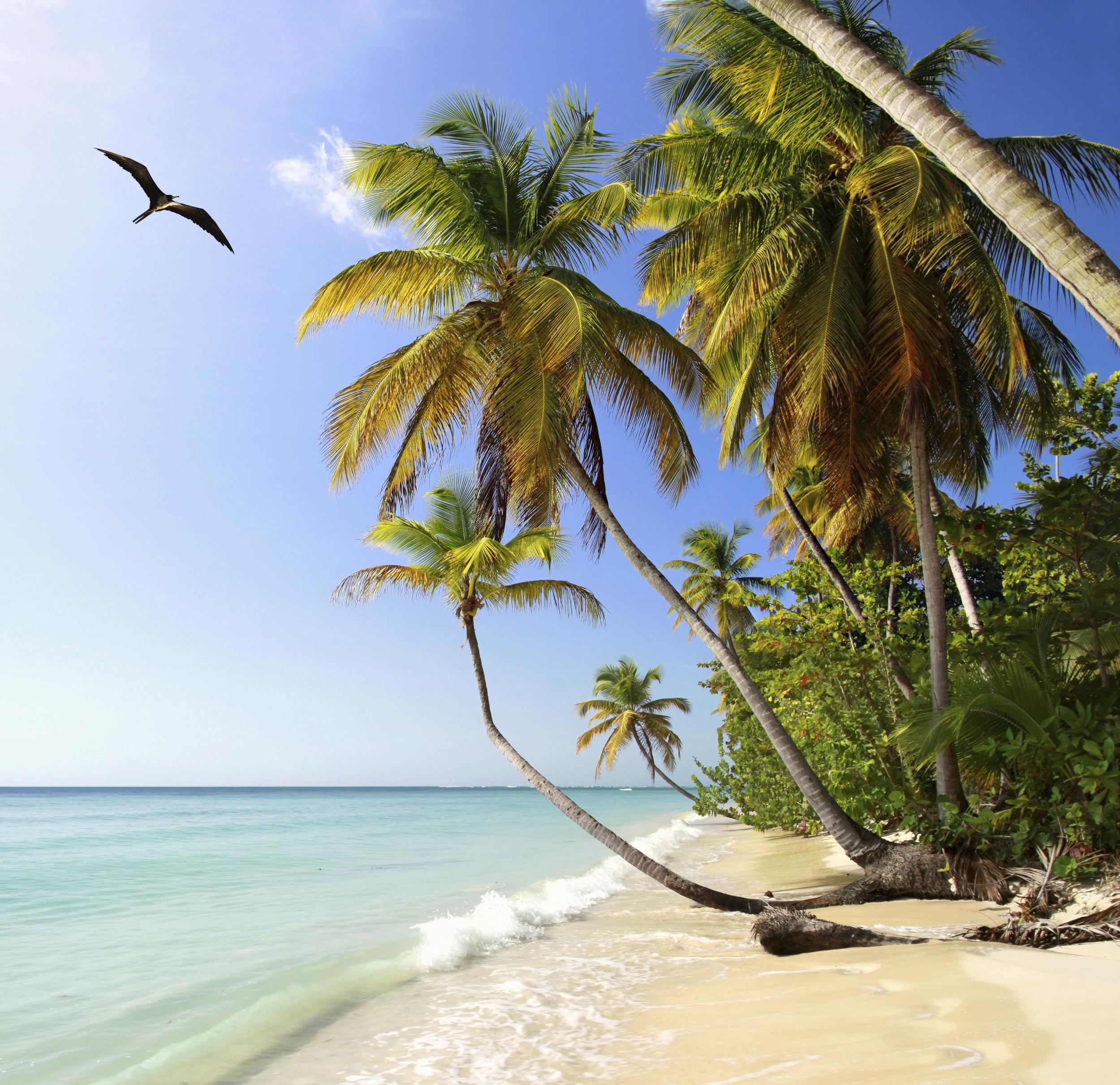 Image of a Trinidad and Tobago beach