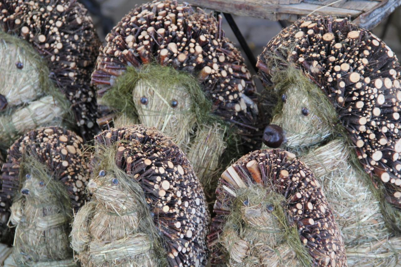 bottlebrush-animals-hedgehog