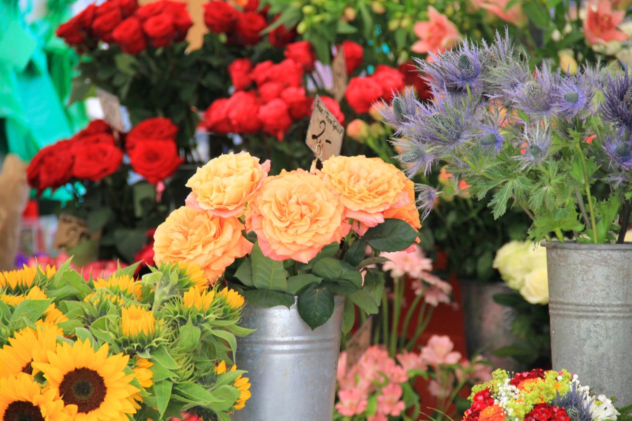 Insanely beautiful flowers