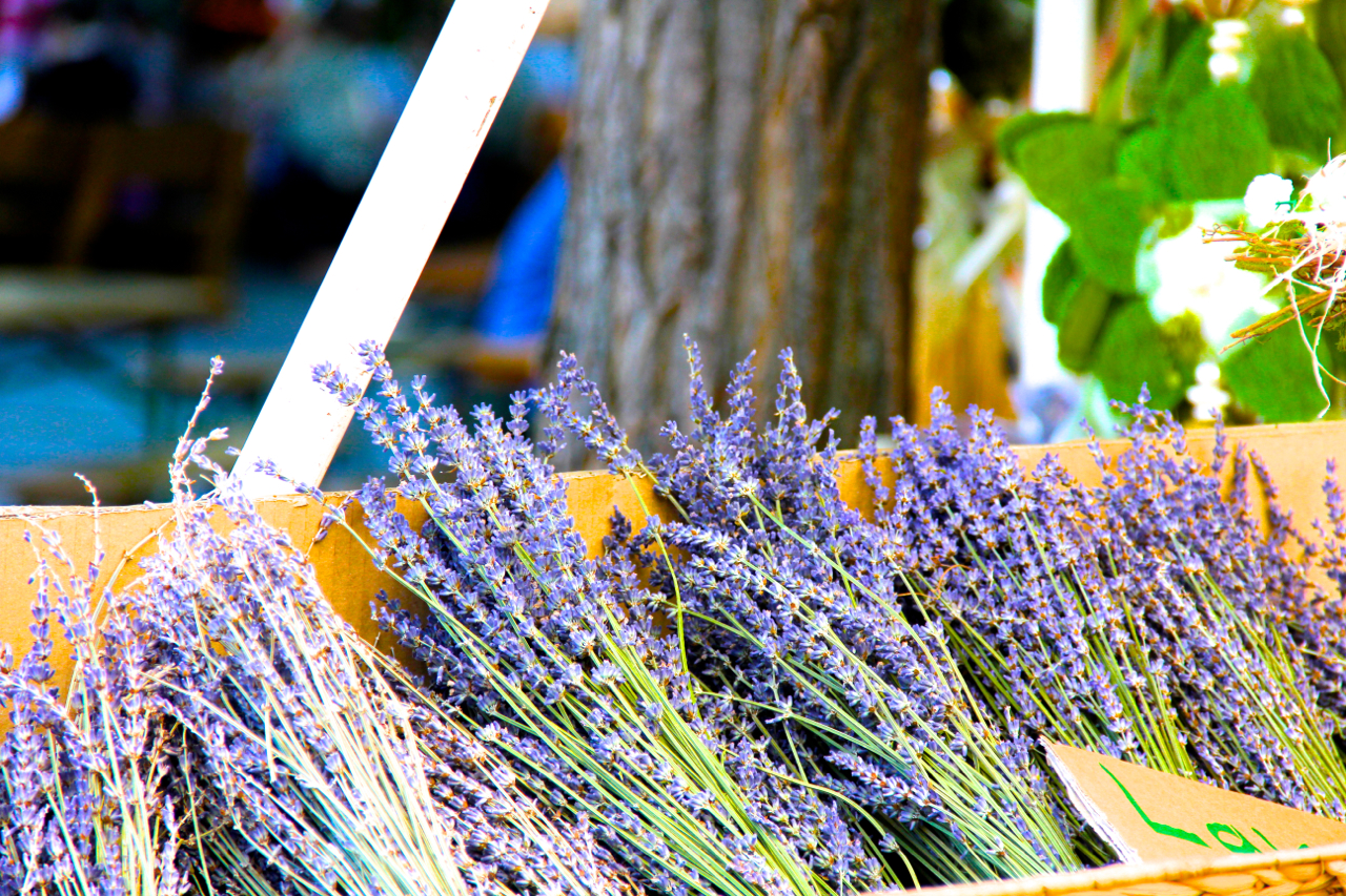 Fresh Lavender, one of my favorite scents