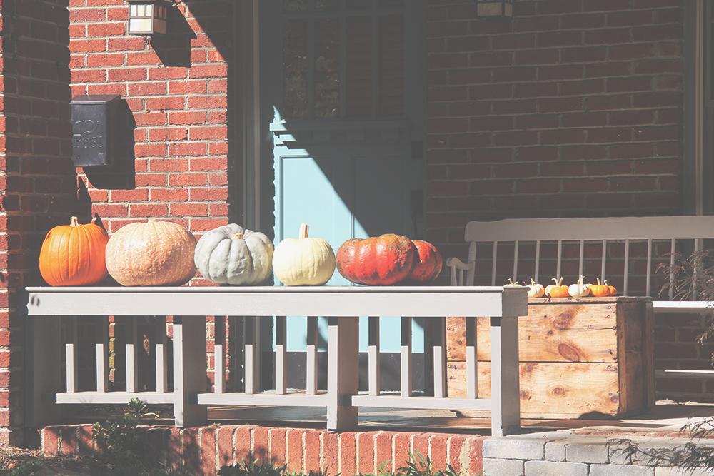 jotorrijos-jo-torrijos-asimplerdesign-pumpkins-1.jpg