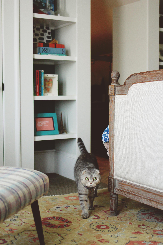 jo-torrijos-a-simpler-design-atlanta-interior-design-ajc-master-bedroom-styled-16.jpg