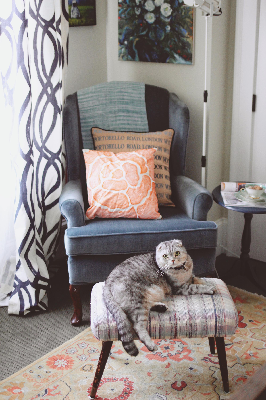 jo-torrijos-a-simpler-design-atlanta-interior-design-ajc-master-bedroom-styled-4.jpg
