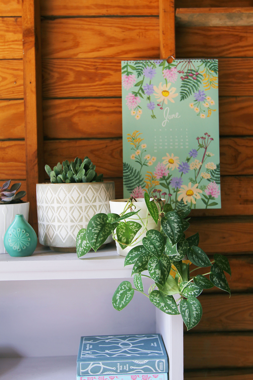 a-simpler-design-annie-sloan-dallas-furniture-lilac-bookcasejpg5.jpg