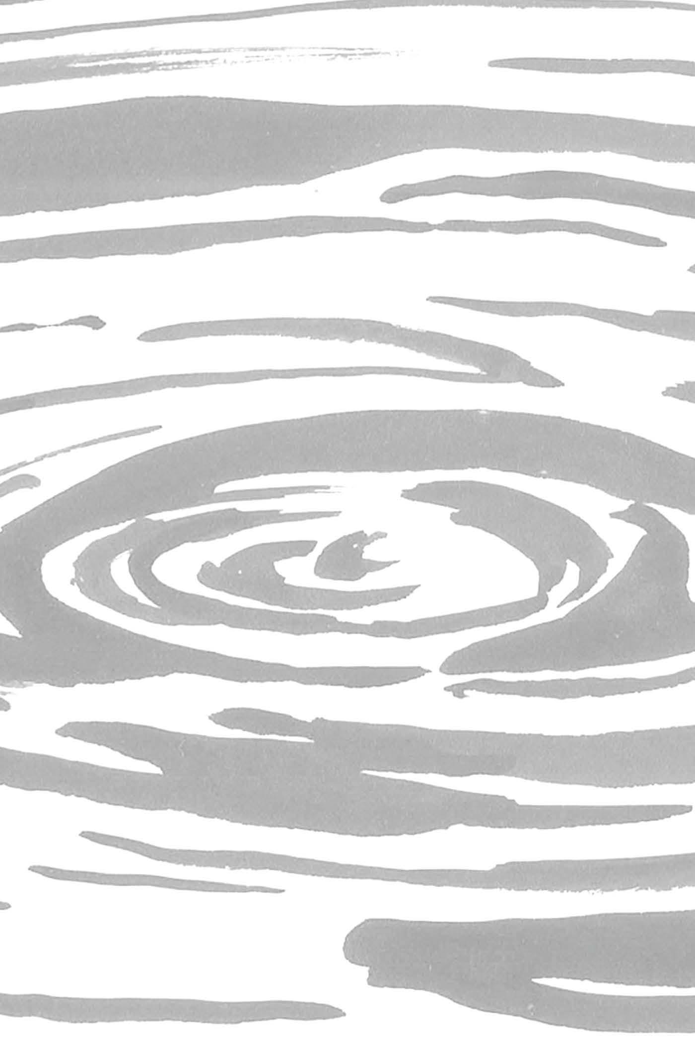 LAKE_IMAGO_2_lo_Page_04.jpg