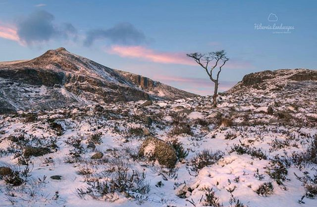 Featured Photo: First light at Annalong Valley, Mourne Mountains, County Down by the very talented @hibernia_landscapes.  Make sure to check out his page.  Follow us to see more amazing images of Ireland 😀 -------------------------------------------------------------------------- Use our #pictureireland hashtag to share your best photos and to be in with a chance to be featured on our Instagram and website community page: www.picture-ireland.com/community  #pictureireland #fineart #landscape #photography #ireland #inspireland_ #loveireland #tourismireland #igersireland #insta_ireland #instaireland #irish #photography #discoverireland #photos #photooftheday #picoftheday #loves_ireland # #walkingtrails #hike #annalongvalley #mournemountains #countydown #northernireland #snow #winter