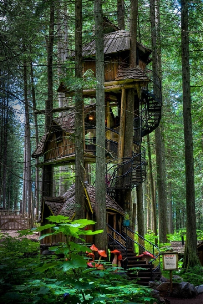 This is my favorite tree house out of all of them. It's unique structure and slender look make it appealing to the eyes. You can find this tree house in British Columbia, Canada. It is said to be the tallest tree house.