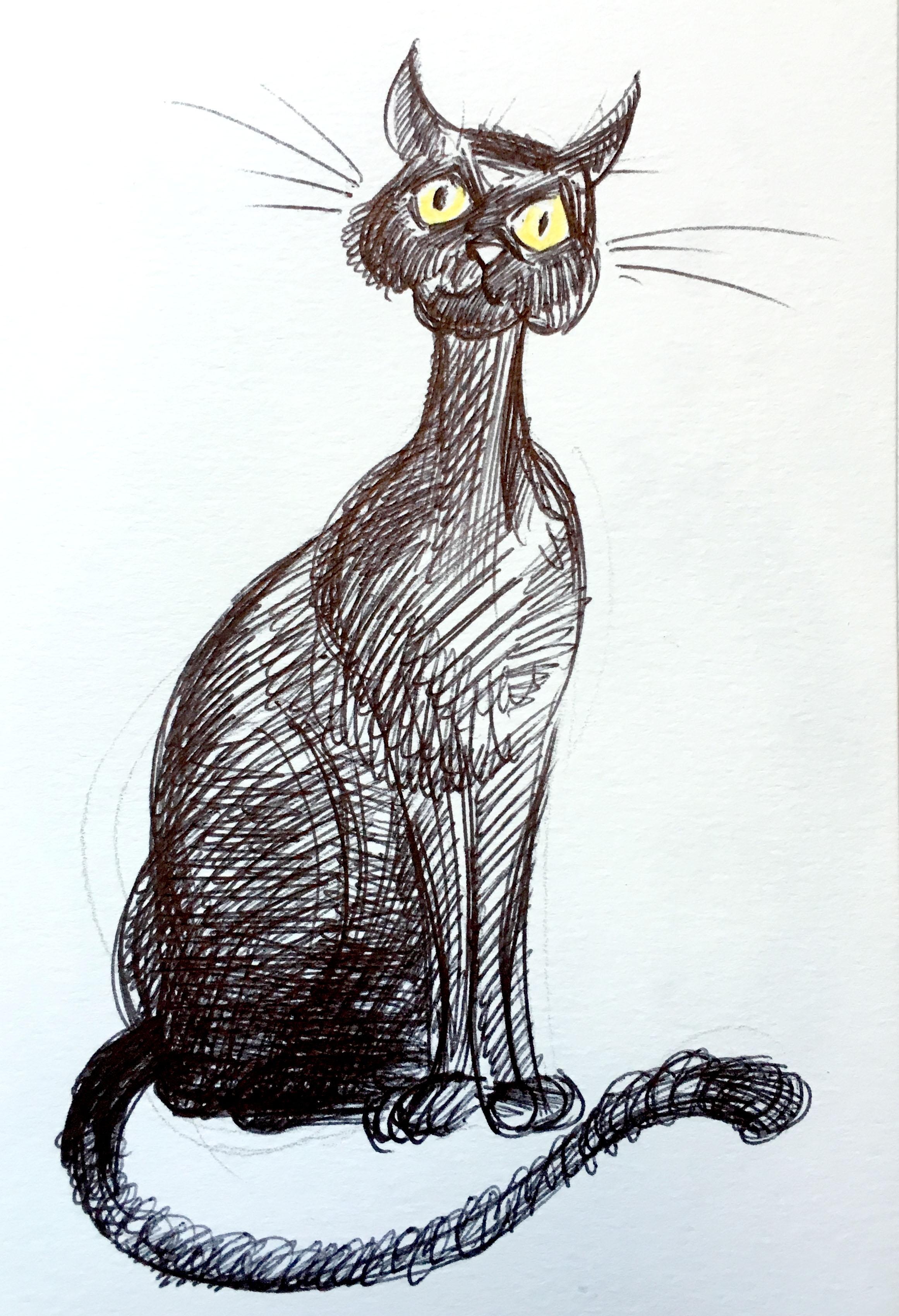 gatto_06.jpg