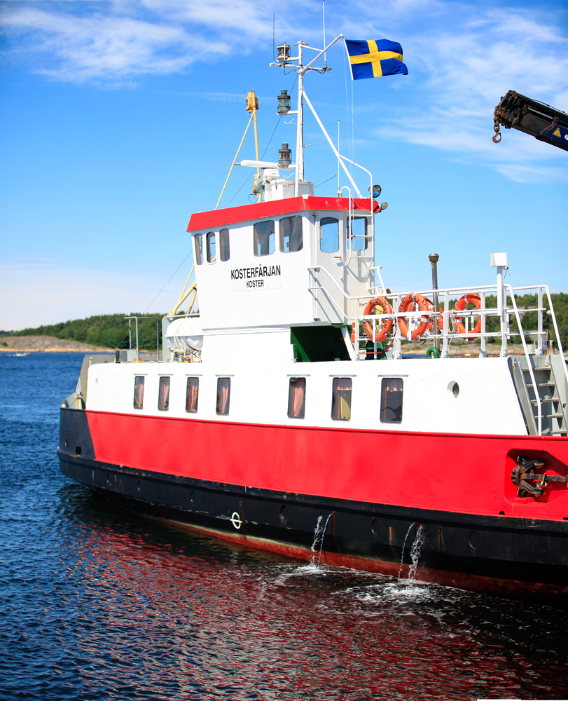Unless you have your own boat, access to the Koster Islands is by the Koster Marin passenger ferry from Strömstad on the mainland or on day tours from various locations, including Strömstad, Tjärnö, and Resö.