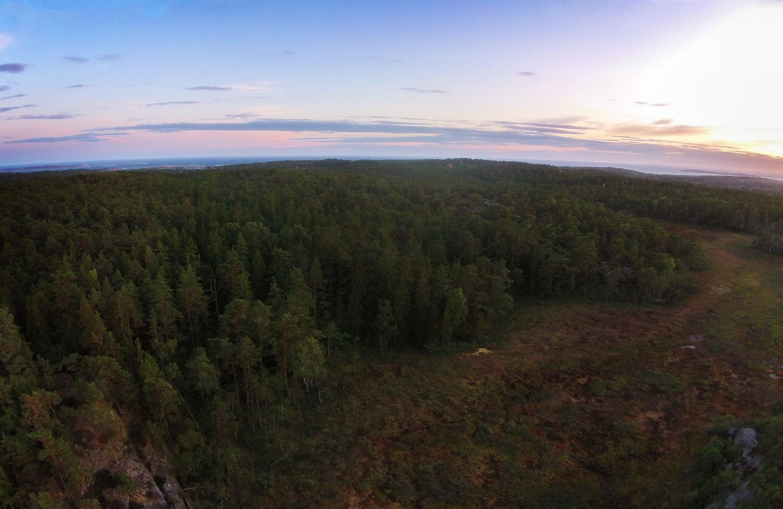 Ilemyr Nature Reserve