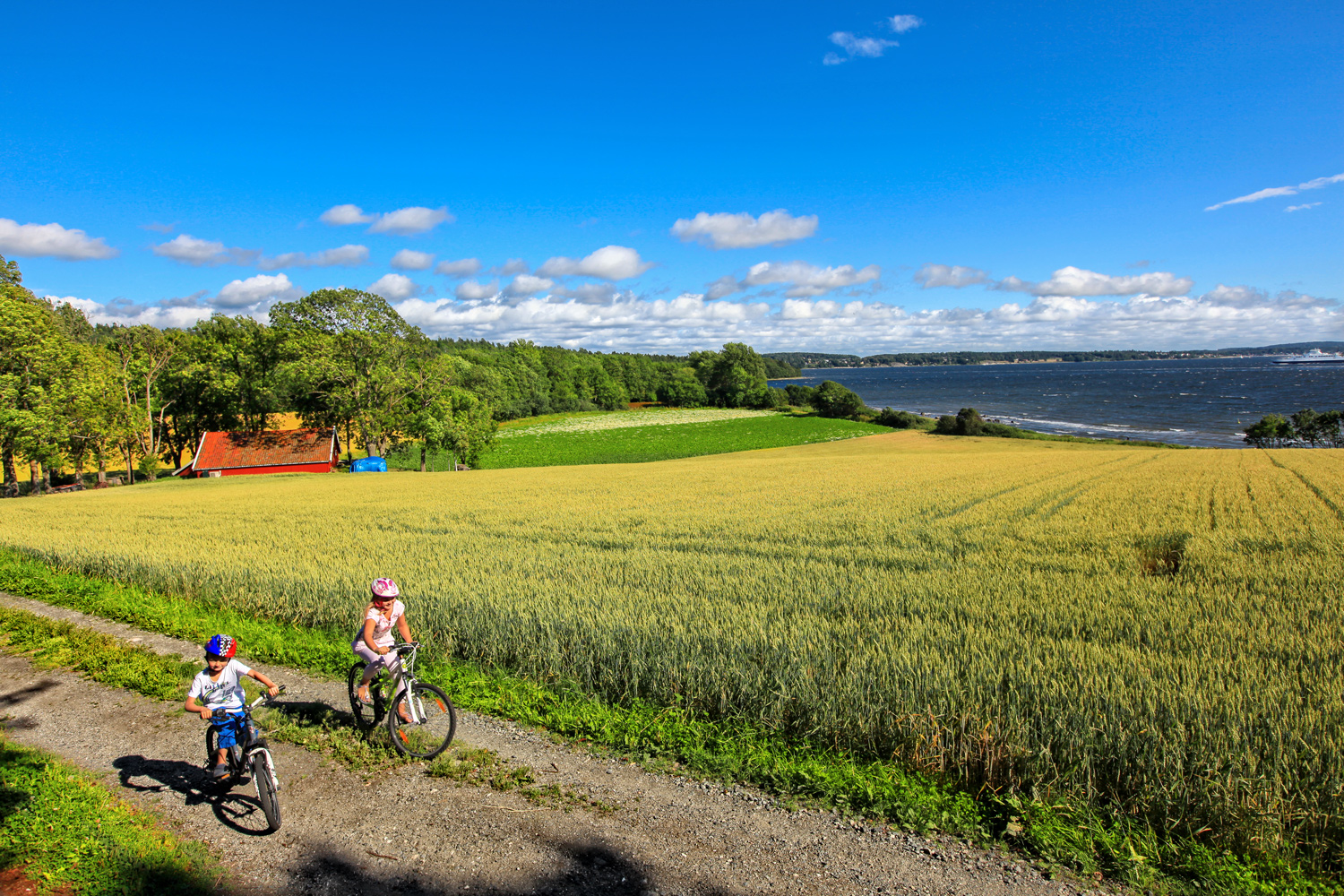 Cycling is definitely the ideal way to travel when on Jeløya. There are many narrow roads and paths that crisscross the whole island.