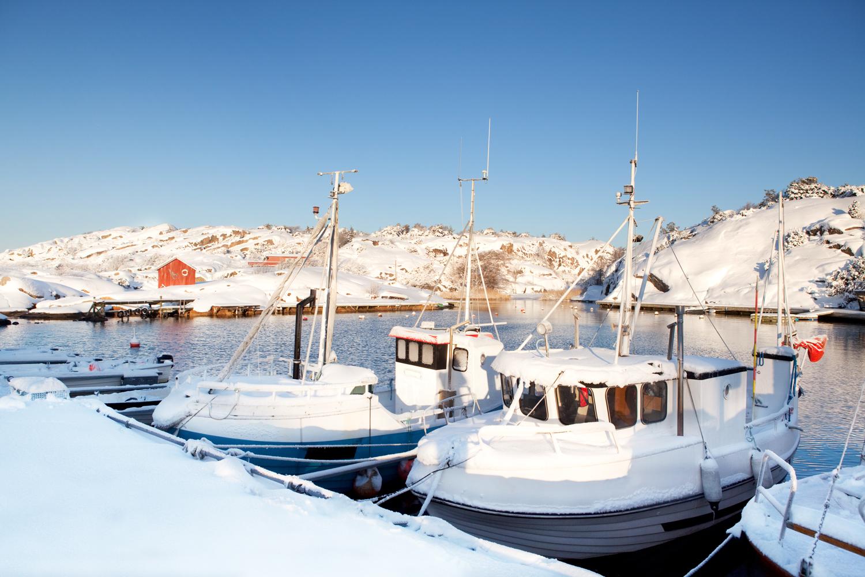 Papperhavn-vinter.jpg